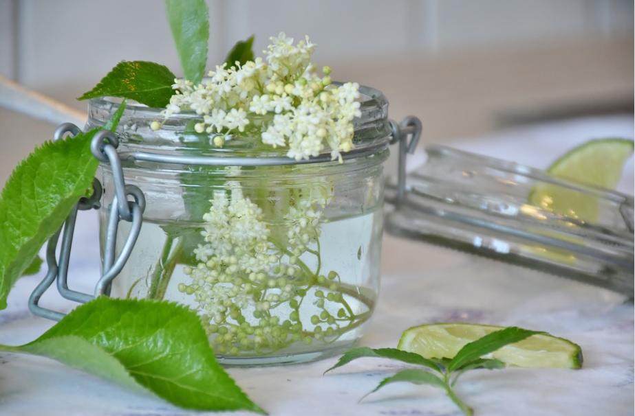 美味しく、美しく、健康に!「エルダーフラワー」でウイルス&花粉対策。