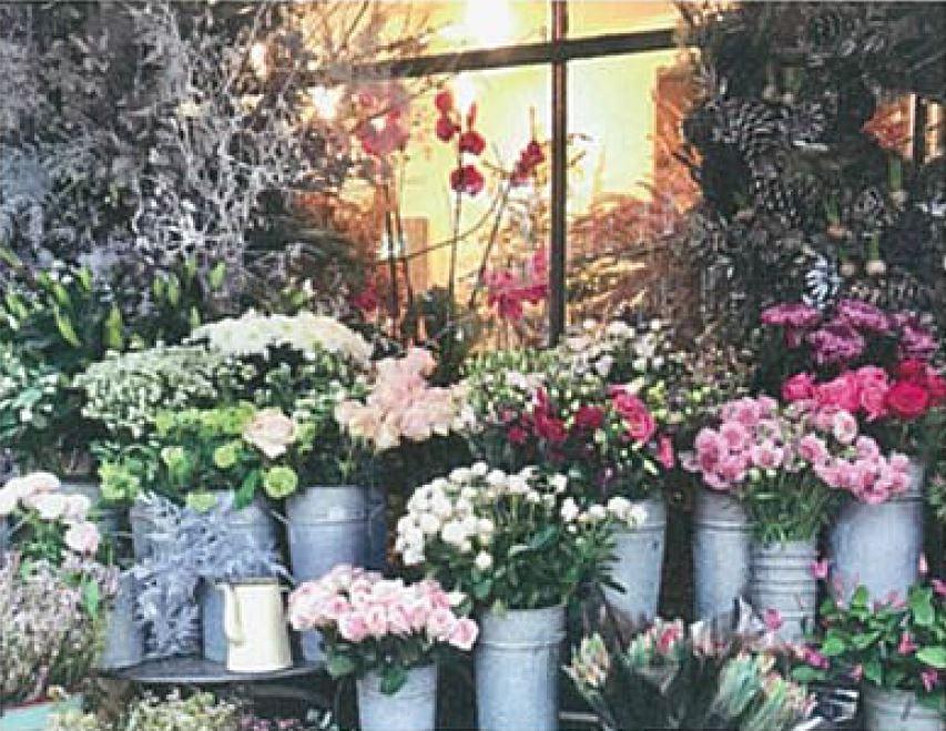 花と緑が身近にある暮らし